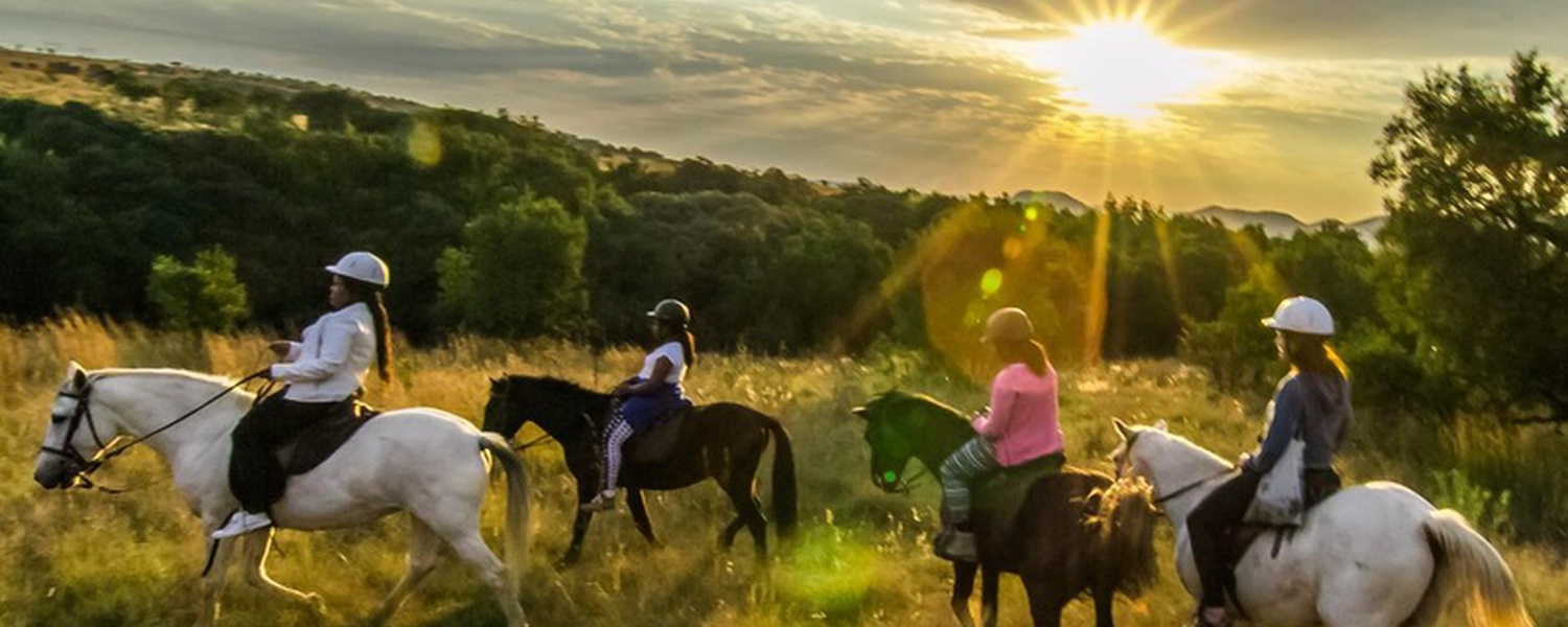 Sunset ride at Harties Horse Trail Safaris