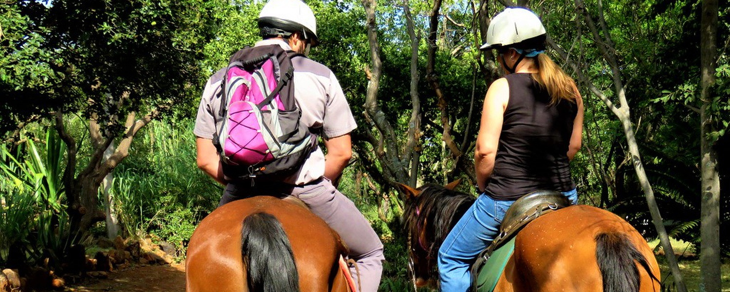 Horse Riding at Harties Horse Trail Safaris