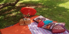 Safari and Champagne Style Picnic (11 AM) R780 per adult