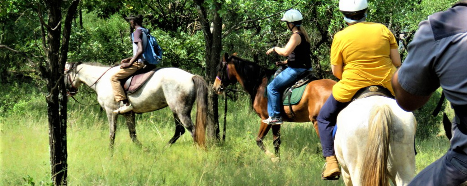Horse riding near Pretoria at Harties Horse Trail Safaris