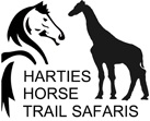 Horseback Safaris near Hartbeespoort Gauteng - Harties Horse Trails